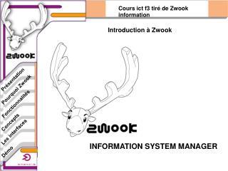 INFORMATION SYSTEM MANAGER