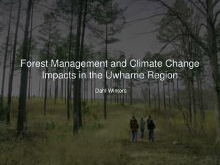 Forest Management and Climate Change Impacts in the Uwharrie Region