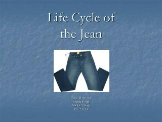 Life Cycle of the Jean