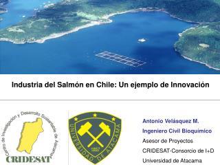 Industria del Salmón en Chile: Un ejemplo de Innovación