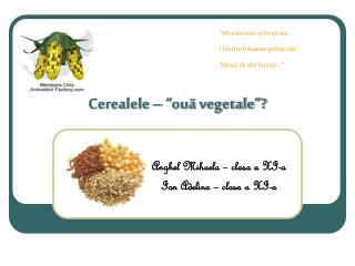 """Cerealele – """"ouã vegetale""""?"""