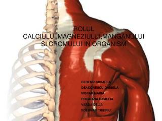 ROLUL CALCIULUI,MAGNEZIULUI,MANGANULUI SI CROMULUI IN ORGANISM