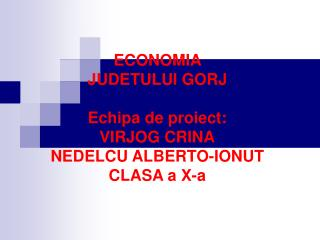 ECONOMIA  JUDETULUI GORJ Echipa de proiect: VIRJOG CRINA NEDELCU ALBERTO-IONUT CLASA a X-a