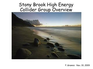 Stony Brook High Energy Collider Group Overview