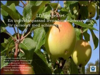 LIV-projektet- En individanpassad levnadsvaneintervention för personer med schizofreni