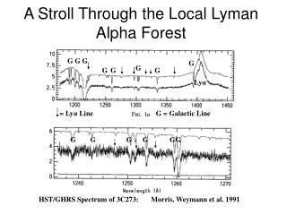 A Stroll Through the Local Lyman Alpha Forest