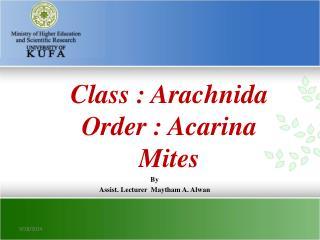 Class : Arachnida Order : Acarina Mites