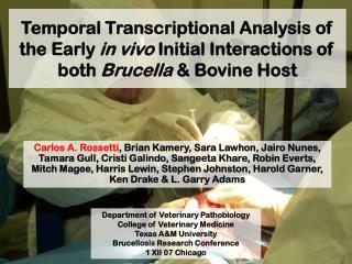 Department of Veterinary Pathobiology College of Veterinary Medicine Texas A&M University