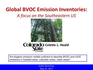 Global BVOC Emission Inventories: A focus on the Southeastern US