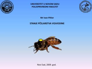 Mr  Ivan Pihler STANJE  PČELARSTVA VOJVODINE