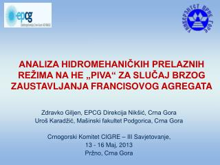 Zdravko Giljen, EPCG Direkcija Nikšić, Crna Gora