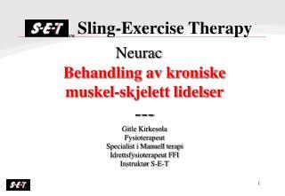 Behandling av kroniske muskel-skjelett lidelser --- Gitle Kirkesola Fysioterapeut