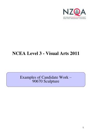 NCEA Level 3 - Visual Arts 2011