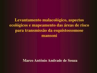 Marco Antônio Andrade de Souza