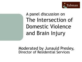 A panel discussion on The Intersection of Domestic Violence and Brain Injury
