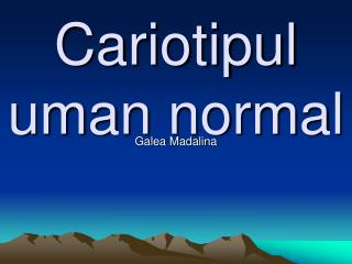 Cariotipul uman normal
