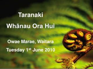 Taranaki Whānau Ora Hui Owae Marae, Waitara Tuesday 1 st  June 2010