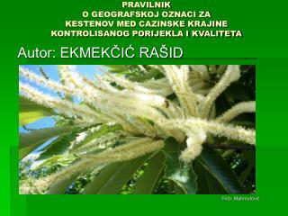 Autor: EKMEKČIĆ RAŠID
