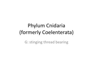 Phylum Cnidaria (formerly Coelenterata)