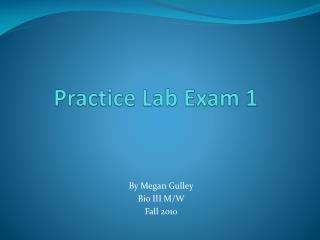 Practice Lab Exam 1