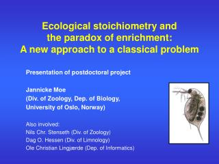 Ecological stoichiometry and  the paradox of enrichment:  A new approach to a classical problem