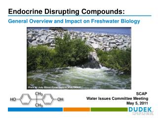 Endocrine Disrupting Compounds: