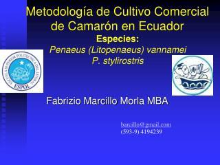 Metodolog a de Cultivo Comercial de Camar n en Ecuador Especies: Penaeus Litopenaeus vannamei P. stylirostris