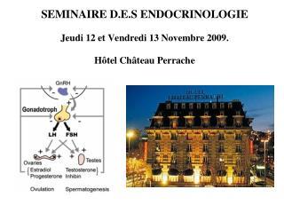 SEMINAIRE D.E.S ENDOCRINOLOGIE Jeudi 12 et Vendredi 13 Novembre 2009. Hôtel Château Perrache