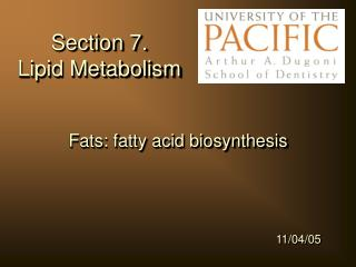Section 7.   Lipid Metabolism