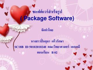 Package Software