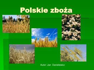 Polskie zboża