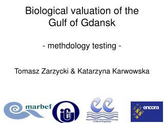 Biological valuation of the  Gulf of Gdansk -  methdology testing  -