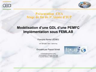 Présentation  CEA Stage de fin de 3 e  Année d'IUP