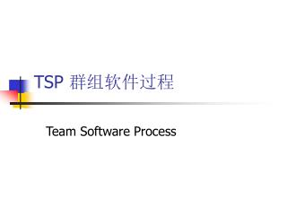 TSP  群组软件过程