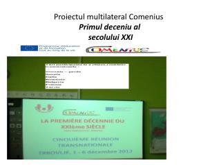 Proiectul multilateral Comenius Primul deceniu al    secolului XXI