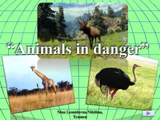 """Animals in danger"""