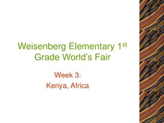 Weisenberg Elementary 1 st  Grade World's Fair