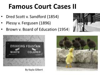 Famous Court Cases II