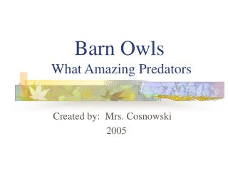 Barn Owls       What Amazing Predators