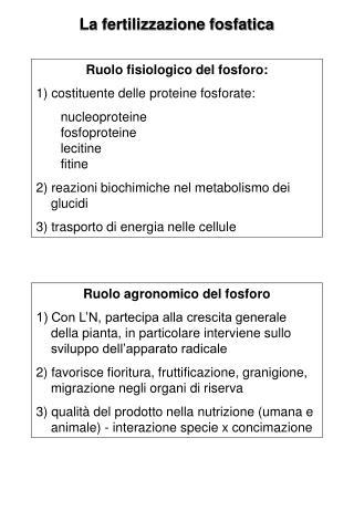 La fertilizzazione fosfatica
