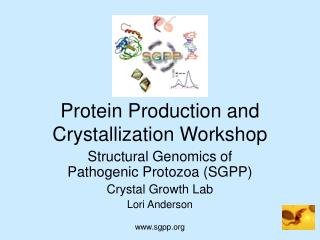 Protein Production and Crystallization Workshop