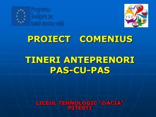"PROIECT   COMENIUS   TINERI ANTEPRENORI  PAS-CU-PAS LICEUL TEHNOLOGIC ""DACIA"" PITESTI"