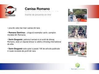 Canisa Romano Inainte de prezenta on-line