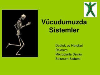 V�cudumuzda Sistemler
