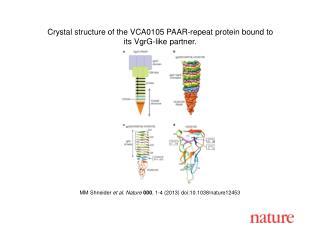 MM Shneider  et al. Nature  000 , 1-4 (2013) doi:10.1038/nature12453