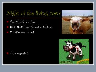 Night of the living cows