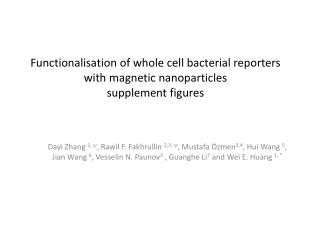Functionalisation of whole cell bacterial reporters with magnetic nanoparticles supplement figures