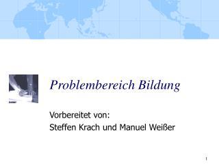 Problembereich Bildung