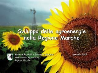 Sviluppo delle  agroenergie nella  Regione Marche