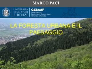 LA FORESTA URBANA E IL PAESAGGIO